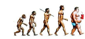 Picture of the Day: Evolution of Fat